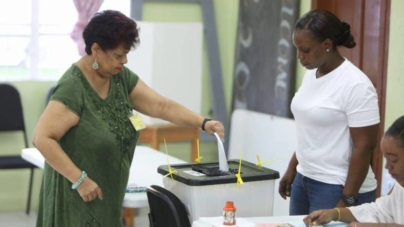 Gov't approves foreign observers for 2020 elections