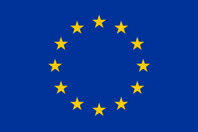 Stalled electoral process, security threats, coronavirus cause Carter Center, EU observers to withdraw from Guyana
