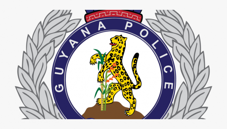 Police commander denies using search to harass PPP/C agent