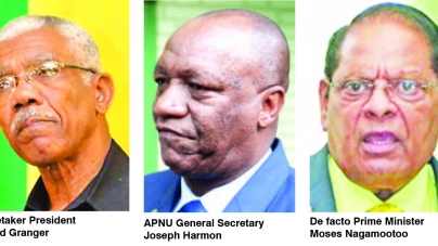 APNU/AFC damaging credibility of Guyana on int'l stage – Ali