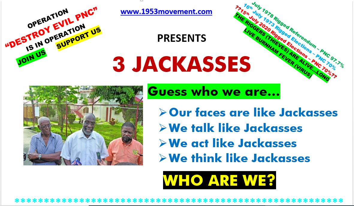 3-jackasses