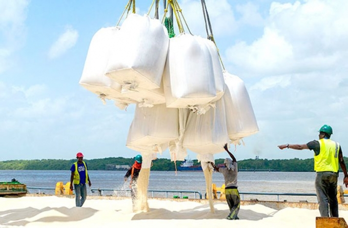 Guyana expected to rake in about US$240M from rice industry