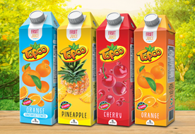 DDL Group invests $4B in new Tetra Pak plant