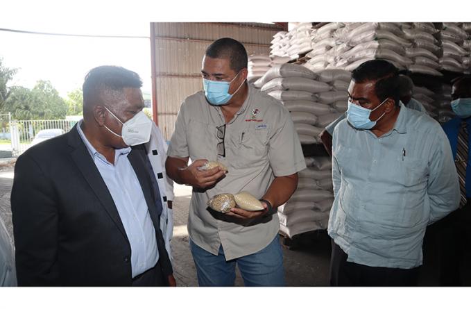 Massive corn, soya bean cultivation project soon