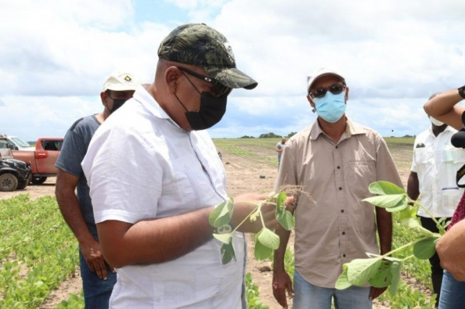 $45M trial for corn, soya bean showing positive results