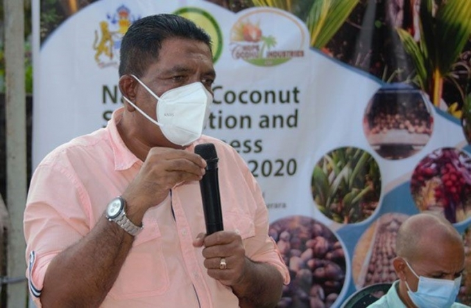 Revenue from coconut industry 'climbs'