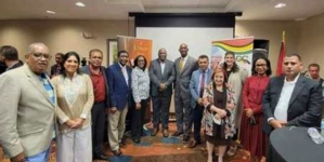 Diaspora shows 'significant interest' in investing here