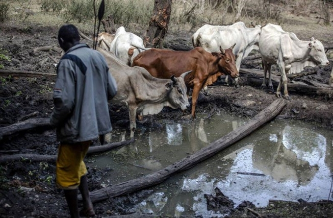 Food security and water security go hand in hand